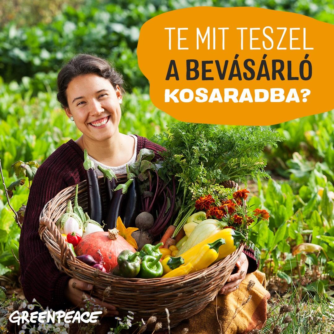 Greenpeace online fundraising